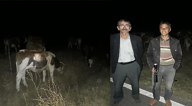 Dinar Yıprak Köyünde Hayvan Hırsızları Kaçtılar