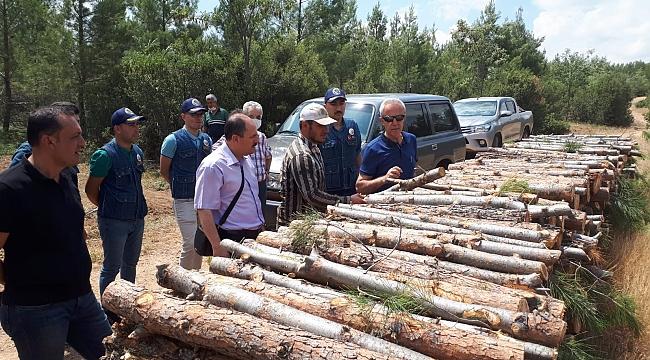 Isparta Orman Bölge Müdürümüz Dinar Orman İşletmesinde İncelemelerde Bulundu