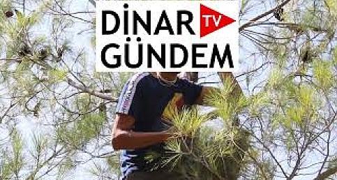 Dinar'da İntihar Girişimi VİDEO HABER
